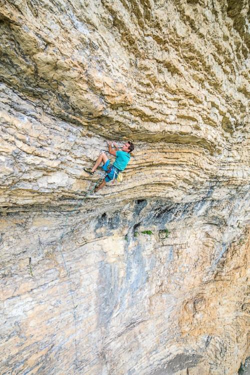 Brice secteur Le Puy